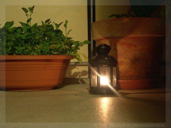 ich liebe es nachts auf der Stufe von der Balkontür zu sitzen und nur die kleine Kerze leuchtet und dann in den Sternenhimmel schauen... hach