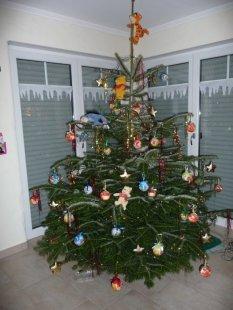 Weihnachten  2010 mit Kids