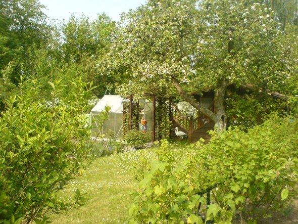 Garten 'Laube'