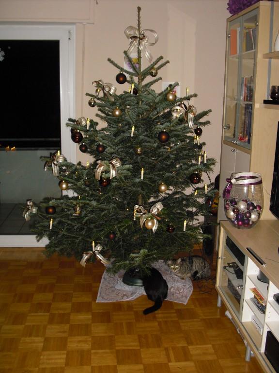 Weihnachtsdeko 39 weihnachten 39 erste gemeinsame wohnung nun fast vollendet zimmerschau - Weihnachtsdeko wohnung ...