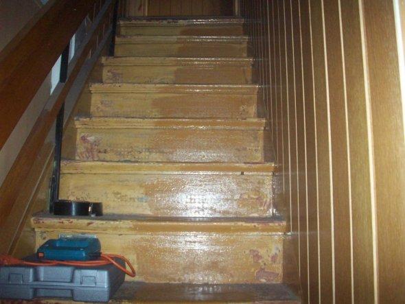 """Die Treppenstufen sahen auch """"lecker"""" aus."""