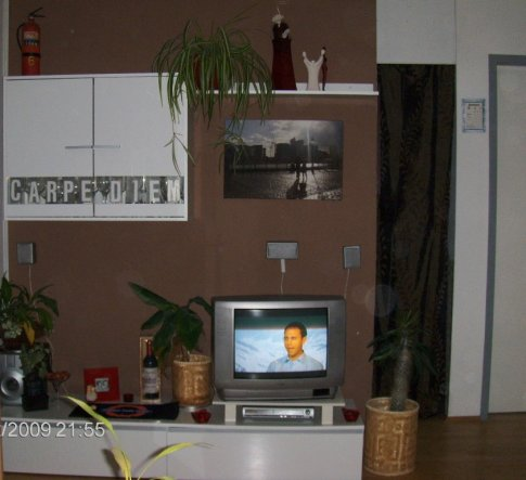 Braune Wand Wohnzimmer ? Leamarieravotti.com Braune Wand Wohnzimmer
