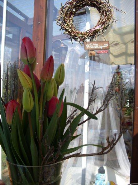 Terrasse / Balkon 'springtime 2010'