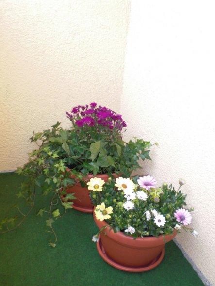 Terrasse / Balkon 'Unser mini Balkon'