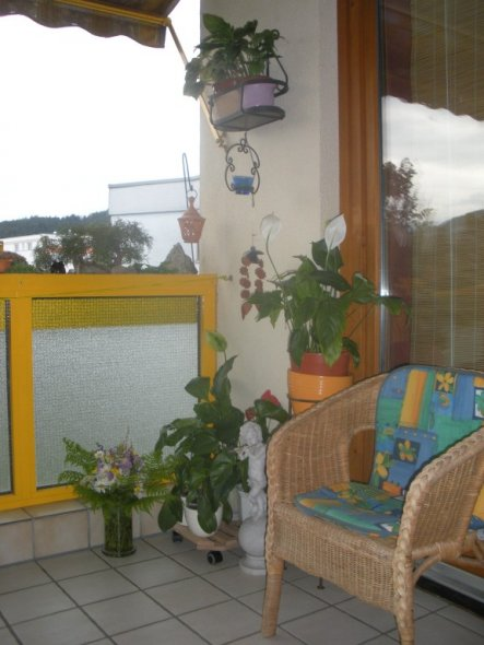 Terrasse / Balkon ' Loggia'