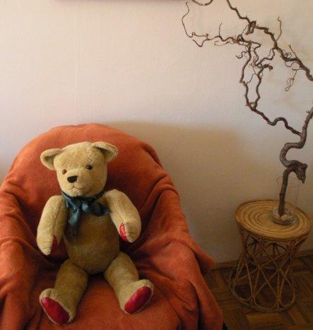 """Mein über vierzig Jahre alter Teddy, nach einem gründlichen """"Bad"""" wieder in neuem Glanze."""