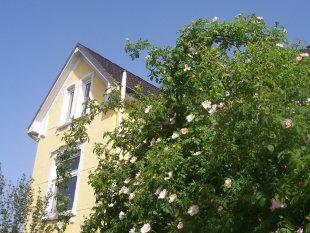 Hausfassade / Außenansichten 'Unsere Villa Kunterbunt'