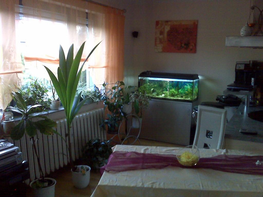 Wohnzimmer \'Wohnzimmer mit integrierter Küche\' - Unser trautes Heim ...