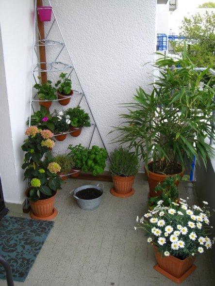 Terrasse / Balkon 'Die Oase'