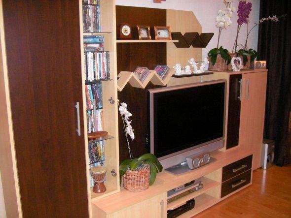 wohnzimmer 39 kleine afrika oase 39 mein domizil zimmerschau. Black Bedroom Furniture Sets. Home Design Ideas