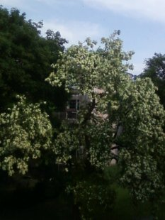 Ausblicke aus meiner Wohnung