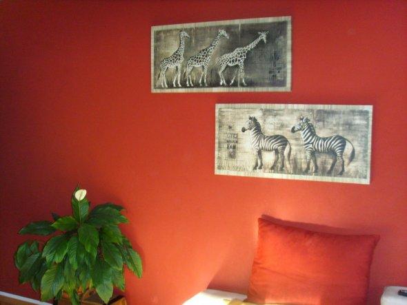 Endlich schöne Bilder an der Wand.