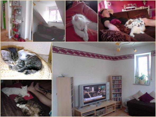 Wohnzimmer 'Kuschelzone'