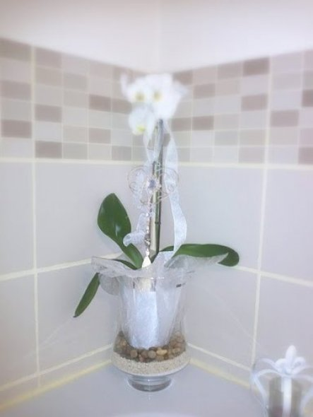 Bad 'Salles de bains'