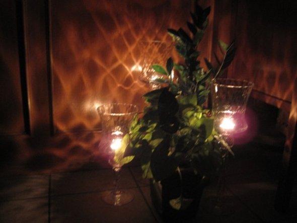 Um Energiekosten zu sparen, habe ich mir 3 unterschiedlich hohe Glaswindlichter zwischen Pflanzen gestellt. Das erspart ein ständige Licht an- und aus