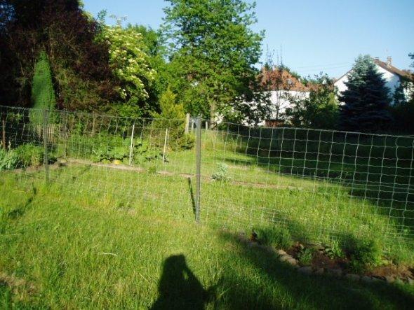 Ela wollte wissen, wie weit der Garten von unsrer Wohnung entfernt ist- im HIntergrund die HÄuser