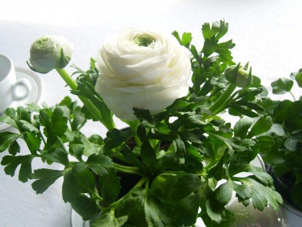 Deko 'Frühling'