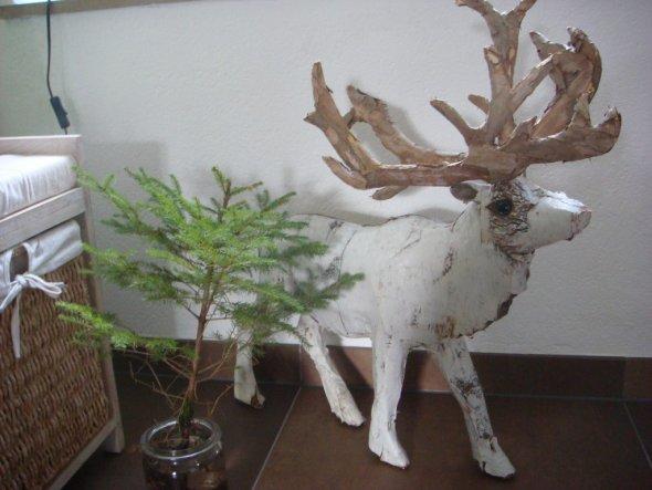 Weihnachtsdeko weihnachtsdeko 2009 landleben von waldhuepfer 17294 weihnachtsdeko 2009 - Weihnachts deko im flur ...
