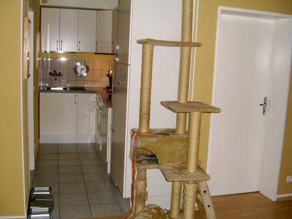 Küche 'kleine Küchenniesche'