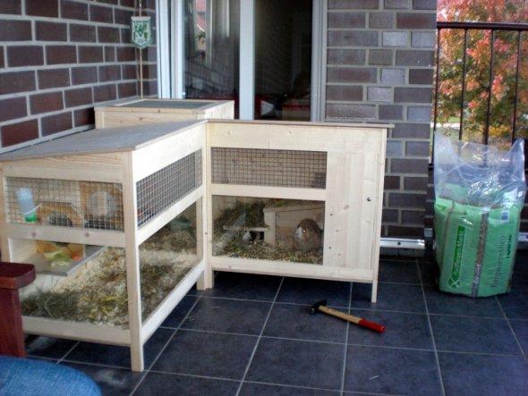 Das ist seit Herbst 09 das neue Zuhause unserer Schweinis. Geräumig und mit vielen Ecken zum Entdecken.