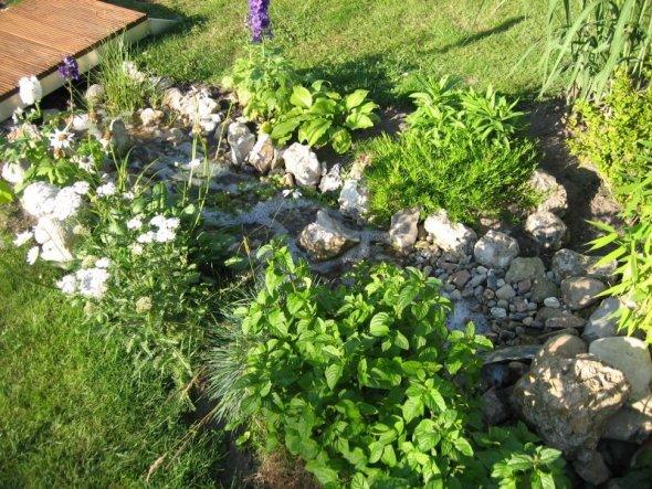 Garten 'Gartenimpressionen'