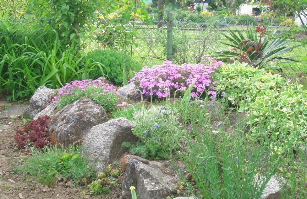 Garten von Rosenreslie