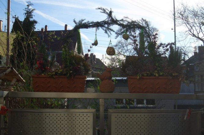 Terrasse / Balkon 'Balkönchen'
