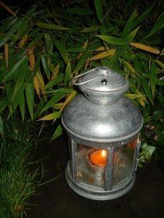 Mein Garten bei Nacht