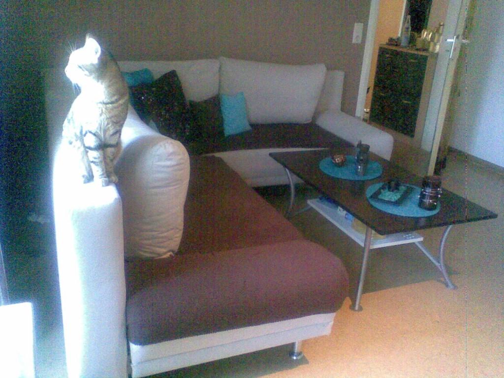 wohnzimmer 'mein wz in braun-türkis' - mein reich - zimmerschau