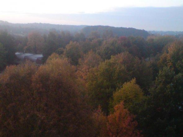 Hobbyraum 'Mein kleiner Gruss zum Herbstbeginn'