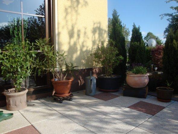 Terrasse / Balkon 'Unsere Oase'