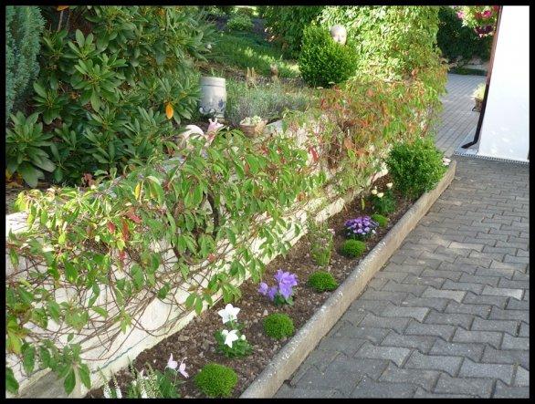 Neue Bepflanzung 2009 Und nun ist sie kaputt
