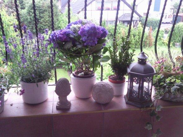 Deko 'Wohnzimmer und Balkon'