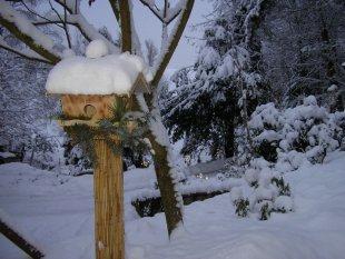 Weihnachten und Winter im Garten