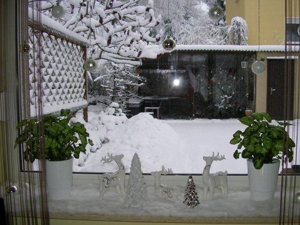 Wohnzimmerfenster 2 Draußen unter dem Rankgitter habe ich viele Tannenzweige und dazwischen eine Lichterkette.  Durch den vielen Schnee sieht m