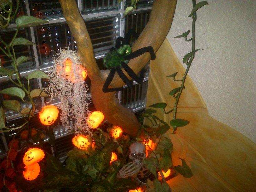 Deko 39 halloween 39 mein zuhause zimmerschau for Halloween zimmerdeko
