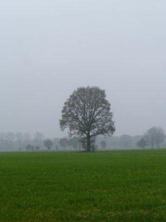 Hausfassade / Außenansichten 'Landleben'