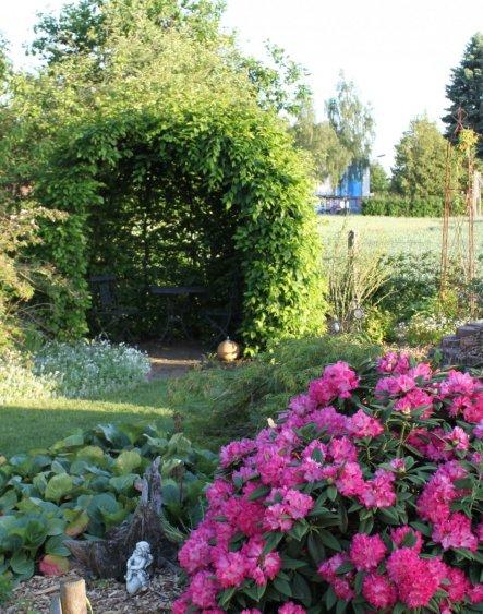Den Buchenpavillion haben 2004 gepflanzt, nun ist er endlich fast zu. Nun fehlt noch nette Deko... :O)