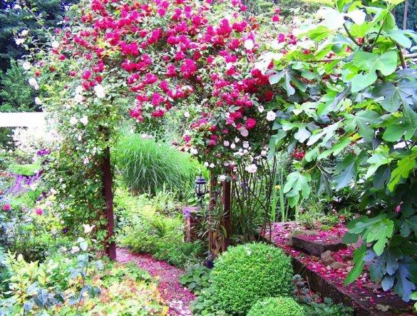 Auf unseren Garten sind wir auch stolz,alles selbst angelegt