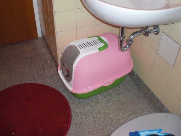 katzenklo muss auch farblich passen ist aber noch nicht fertig wird komplett rosa