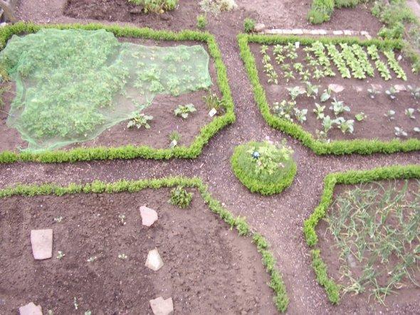 So sah mein Garten noch vor ca 4-5 Jahren aus.
