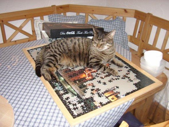 puzzeln ist eine meiner Lieblingsbeschäftigungen