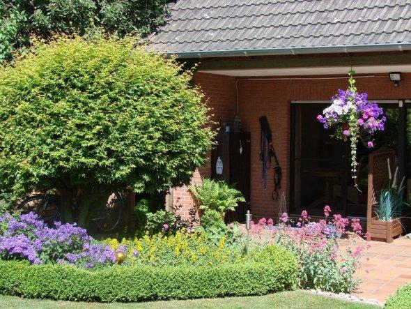 Garten 'Gartenimpressionen 2011'