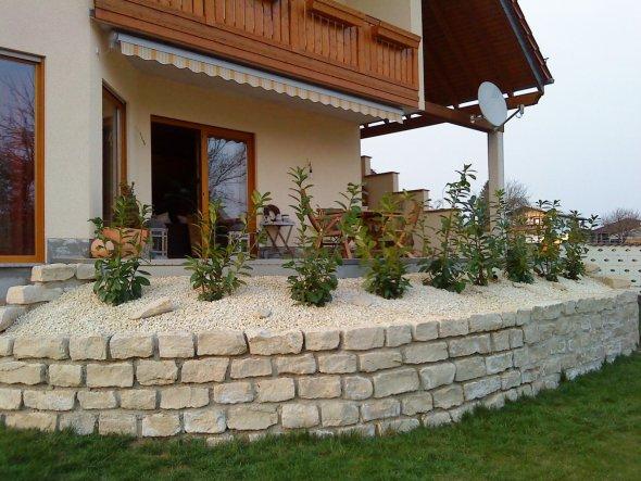 Endlich haben wir den Hang an der Terrasse fertig gepflanzt. Sind sehr zufrieden mit unserer Arbeit.
