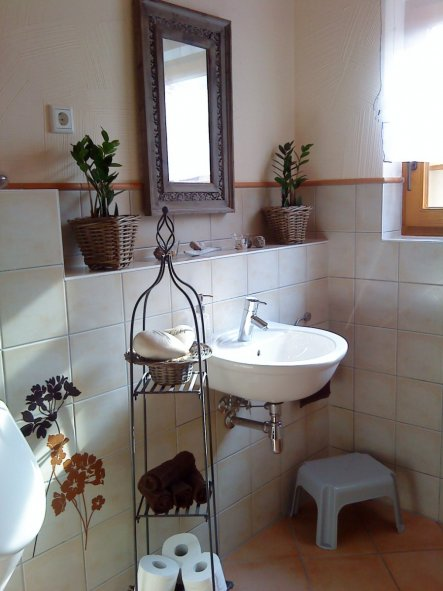Toiletten deko  Gäste Wc Lampe: Bilder von spiegel bauhaus ideen für zuhause.