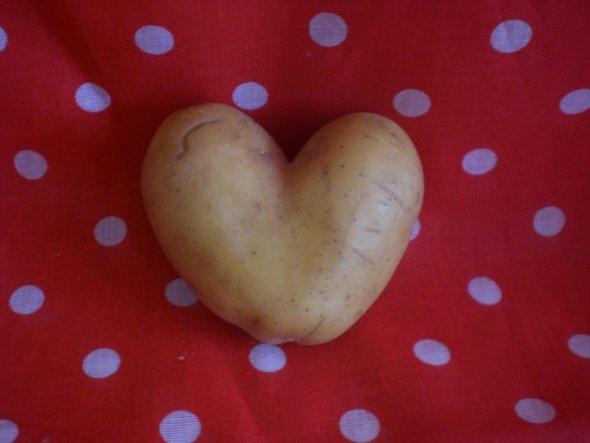 Mit solchen Kartoffeln kann es ja nur ein liebevolles fest werden :-D
