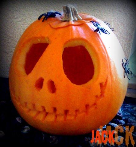 unser Jack :-))