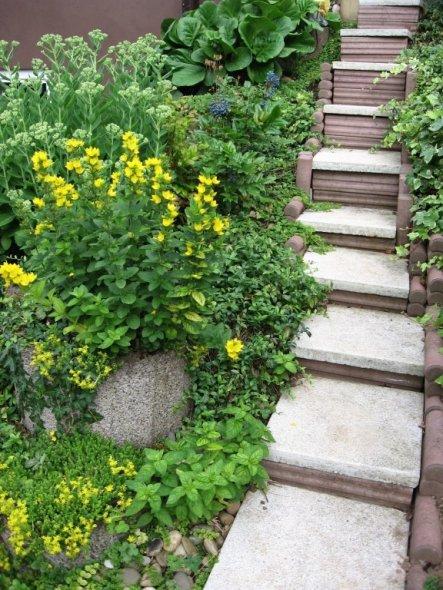kleine Treppe zur Terasse