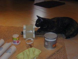 Tipp & Trick 'Katzenfummelbrett'