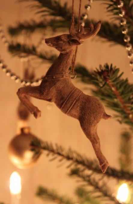 Hirschi auch am Weihnachtsbaum! :))